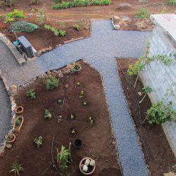 strak het tropisch pluk tuintje